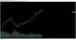 Bitcoin prijs en bitcoin dominantie