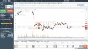 bitmex-dashboard-profit