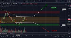 Bitfolio technsiche analyse op bitcoin prijs voorspelling